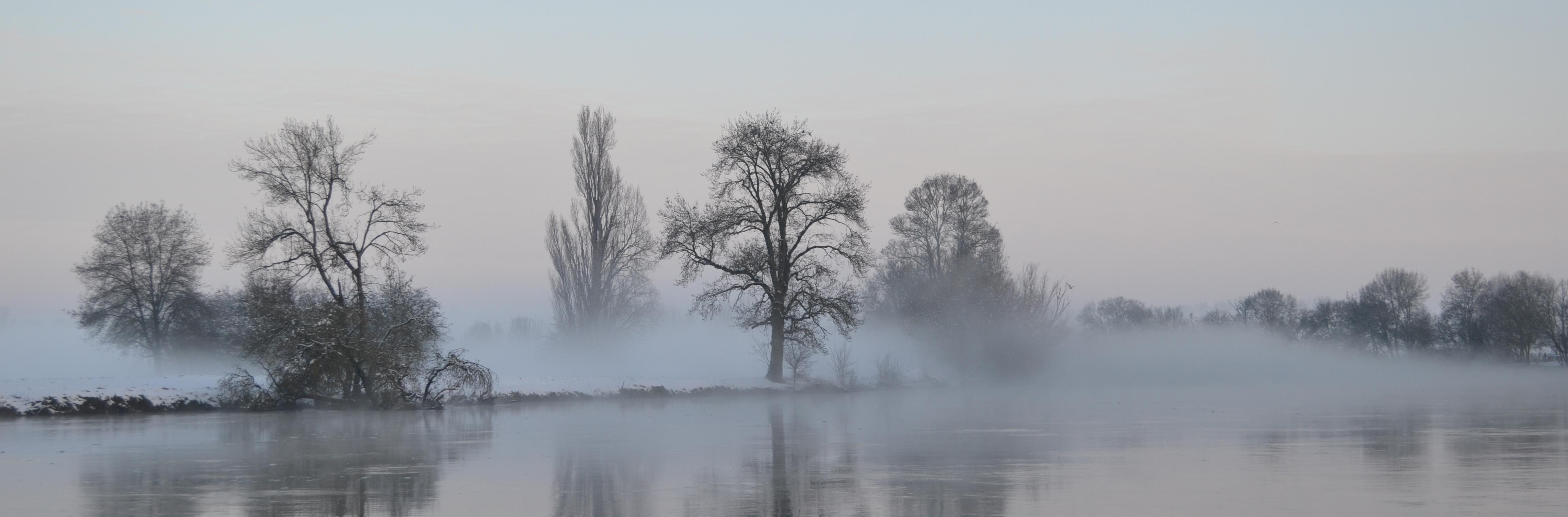 Le Cher sous la brume en hiver